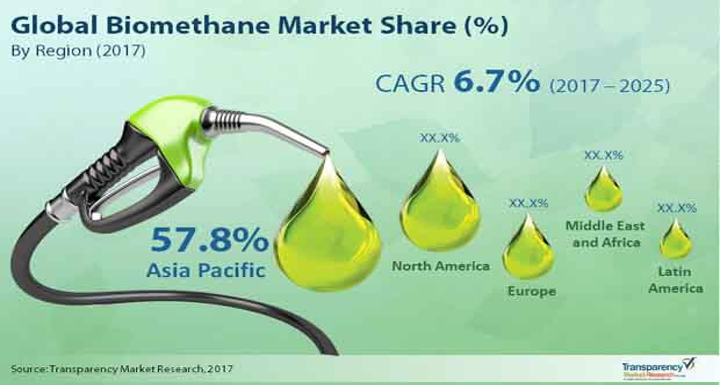biomethane market