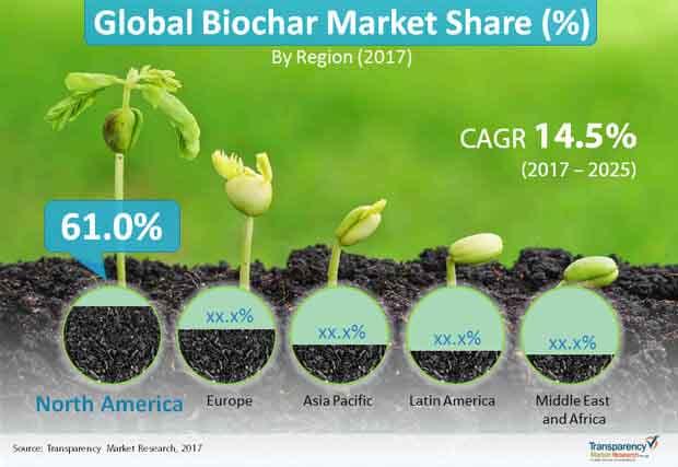 global biochar market